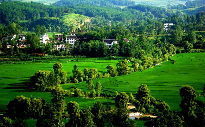 乡村景观规划解析影响西方历史园林的实质性因素