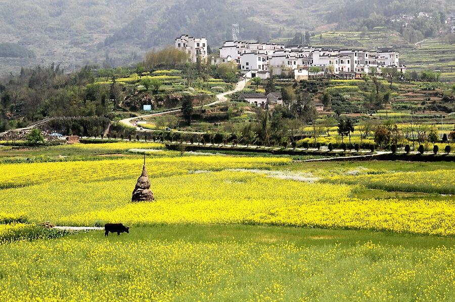 乡村景观对西方现代风景园林的影响
