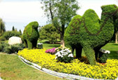 北京世界花卉大观园