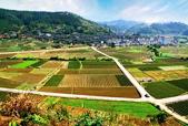 特色农业产业资源型村庄