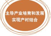 主导产业培育和发展,实现产村结合